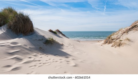 view from the dunes to the North in the Netherlands