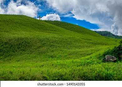 A view of Dzukou Valley ,Nagaland ,India