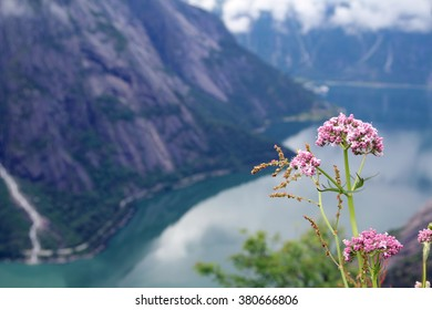 View to Eidfjord from Kjeansen farm, Norway