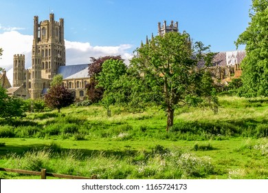 View of Ely Cathedral from Cherry Hill Park, Ely, Cambridgeshire, England