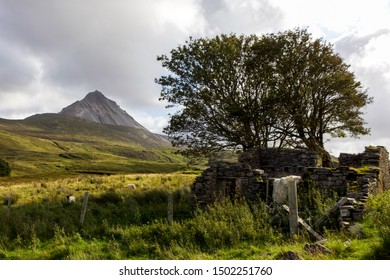 View of Errigal Mountain, Donegal with Old Farm Building Ruins