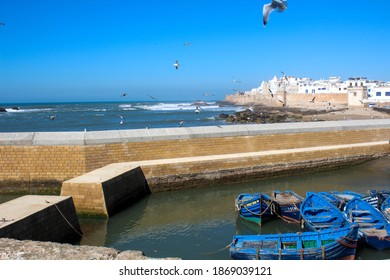 View in Essaouira Morocco with sea view and the skyline of the city with the ocaen sunrise birds gulls boats from the fishing man and the old town