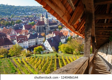 view of Esslingen am Neckar town center from castle with stairca