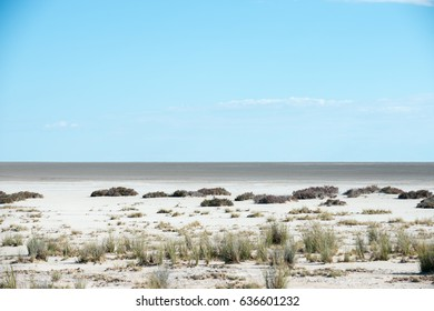 View of the Etosha pan from the Etosha lookout
