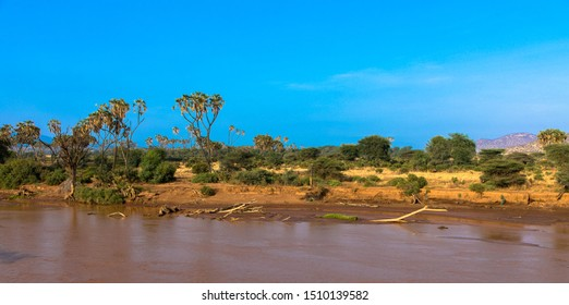 View of the Ewaso Ng'iro River, Samburu national park Kenya