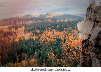 View at fall season time forest in South Poland, Beskidy mountains