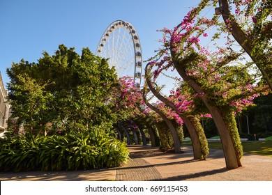 View of Ferris Wheel at South Bank, Brisbane