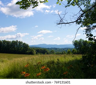 A view of a field and the Green Mountains in Cornwall, VT.