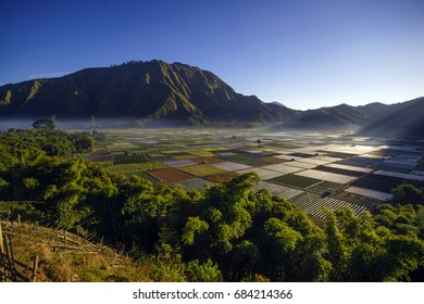 View field at Sembalun Hill,  Lombok island,  Indonesia
