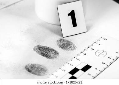 View of a fingerprint revealed by printing.