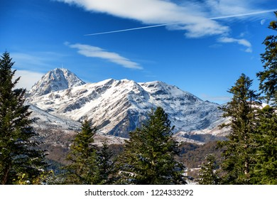 view of fir trees in french pyrenees mountains with Pic du Midi de Bigorre in background