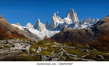 View of Fitz Roy mountain (also known as Chalten). The moon in the sky can be appreciated. On the floor, some dried trunks are making contrast with the grass. Autumn in Patagonia Argentina