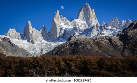 View of Fitz Roy mountain (also known as Chalten). The moon in the sky can be seen. Below, there is a forest of pine trees with some dried trunks. Autumn in Patagonia, Argentina