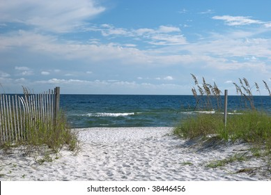 A view of the Florida gulf coast with sea oats in the foreground.
