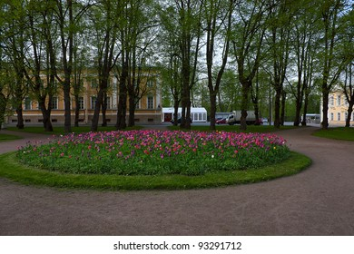 View of flower beds  in   Park, Peterhof, Russia.