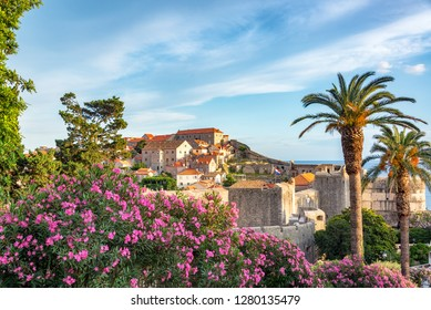 View of flowers, palm trees, and the historic center of Dubrovnik, Croatia