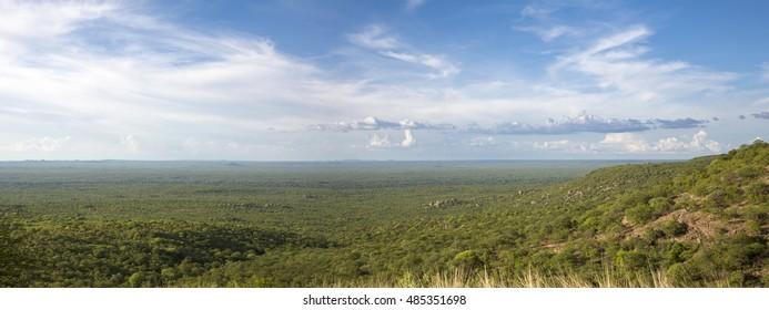 View of the forest, the horizon is Angola, the Kunene River creates the natural border between Angola and Namibia.