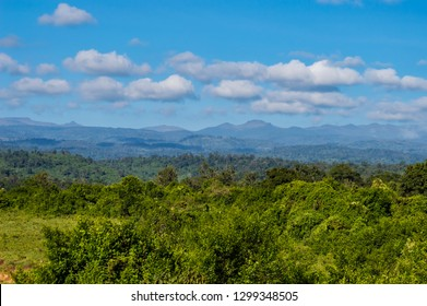 View of the forest and the mountains of Aberdare Park in central Kenya