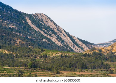 View of the forest and mountains in the province Catalunya, Spain. Copy space