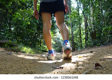 View form the back of a sporty female legs walking through the tropical forest on a summer day. Student girl is exploring wild nature of Asia.