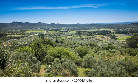 View from the fortress Les Baux-de-Provence into the valley on olive groves in the background the Alpilles. Bouches du Rhone, Provence, France, Europe.