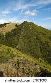View from Fossil Ridge in Mt. Diablo State Park, California.