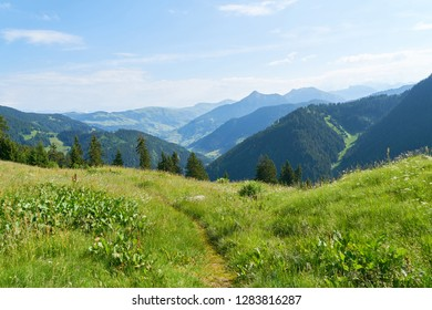 View of French Alps in summer from an alp