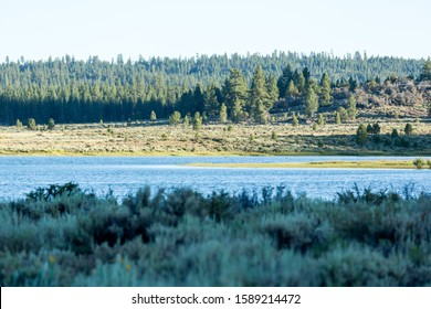 View of Frenchman lake over sagebrush landscape