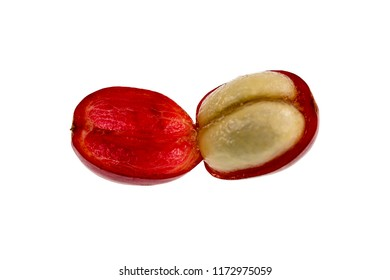 View of a fresh coffee cherry fruit anatomy with the outer section composed by the skin and pulp, in red in the image, and the inner section or seed with two adjacent halves covered by the mucilage