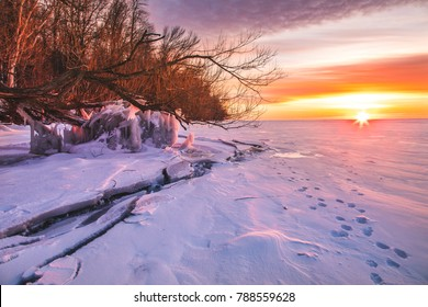 A view of frozen Lake Winnebago. The ice cracked all the way along the shore and various tree branches were frozen to the surface.