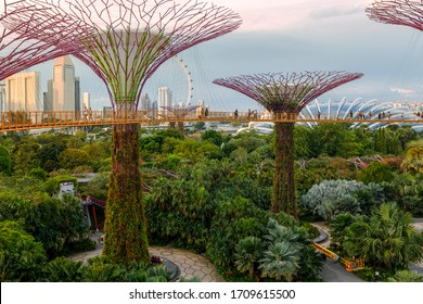 View of futuristic structures at evening haze at Gardens by the Bay, Singapore 07.04.2017