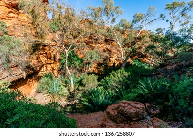 Garten Eden Baum Images Stock Photos Vectors Shutterstock