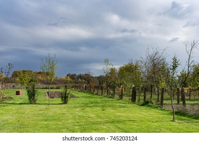View of a garden and orchards on a farm during rainy weather in autumn, colorful autumn rainy scene