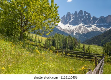 View to the Geisler group of St. Magdalena, Italy