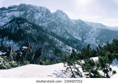 View of the Giewont Tatras mountain from the top of Sarnia Skala, Zakopane, Poland.