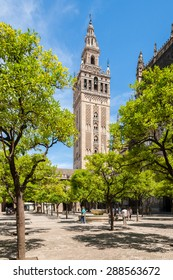 View of the Giralda the bell tower of the Cathedral of Seville