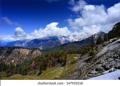 view of the glaciers on the ridge and forested mountains in the Himalayas. Chopta, Uttarakhand, India