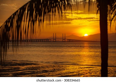 The view of golden sunrise at Penang Bridge with coconut tree.