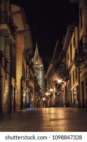 View of the  gothic cathedral at night in Oviedo city