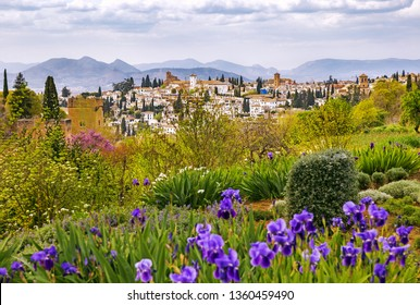 View of Granada and Alhambra from blossoming Generalife Gardens of Alhambra in spring, Granada, Spain