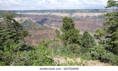 View at Grand Canyon National Park, the north rim location in Arizona.