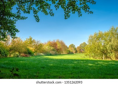 View of green fields, farms and dense forests located at the Tankenberg (near the city of Oldenzaal) on a sunny october day. This is a typical Dutch landscape