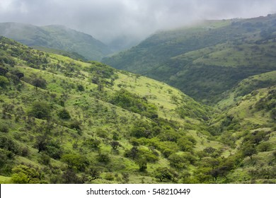 View at green fields in Salalah, Oman