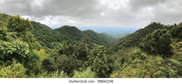 View of Green forest environment of Northern mountains in Thailand