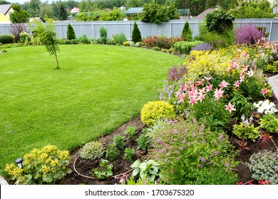 View of a green lawn surrounded by colorful flowers. Landscaping.