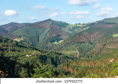 View of the green mountain hills in the countryside of Basque Country, in Guernica, Basque country, Spain