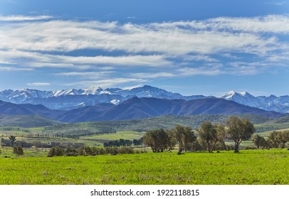 View of the green plain and snowy Atlas Mountains, near Marrakech