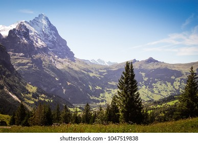 view of grindelwald valley with the Eiger montain. Switzerland
