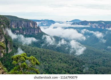 View of Grose Valley.  Blue Mountains in Australia.