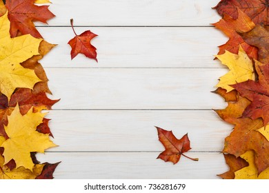 View of group of maple leaves on white wooden background. Autumn concept.